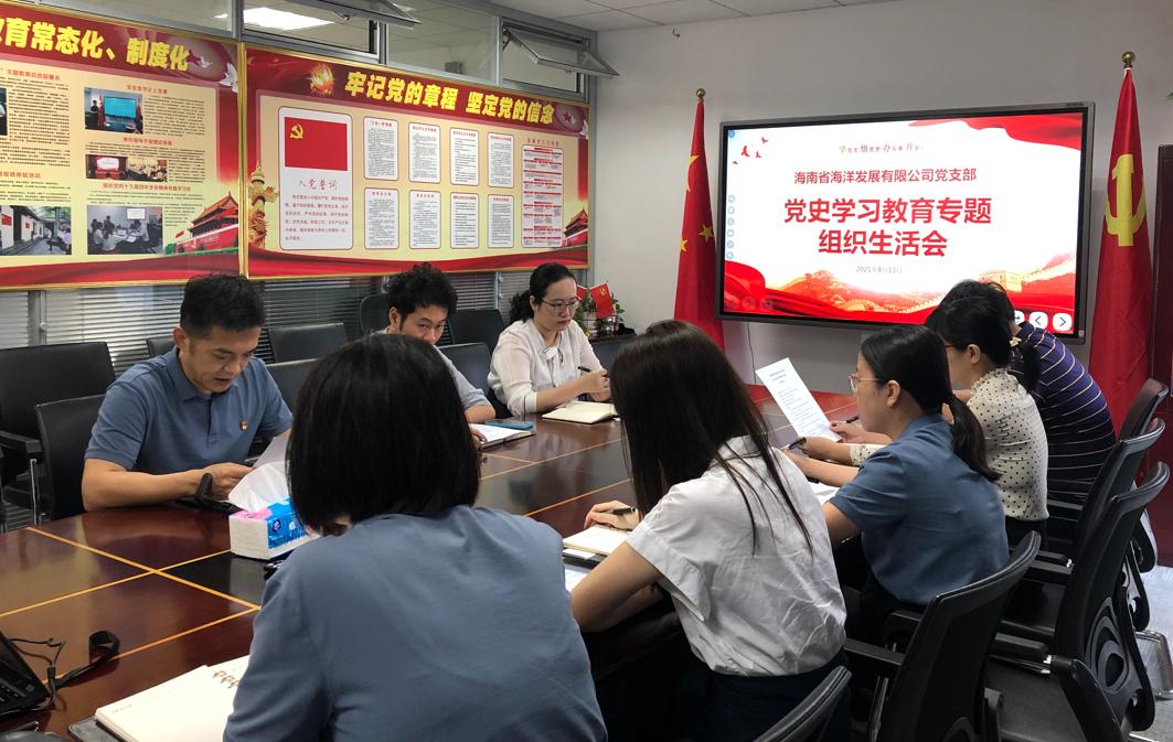 公司党支部召开党史学习教育专题组织生活会